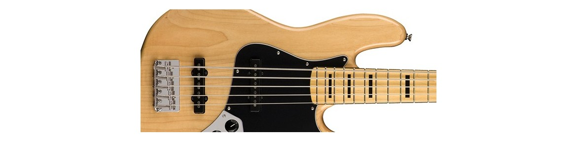 5 & 6 Strings Electric Bass